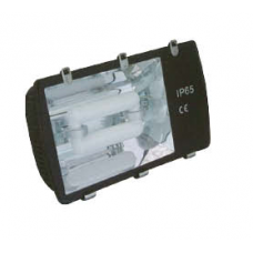 Induction Tunnel Light- 120W