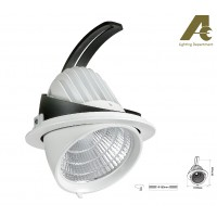 AEC LED Adjustable Downlight X5004D COB